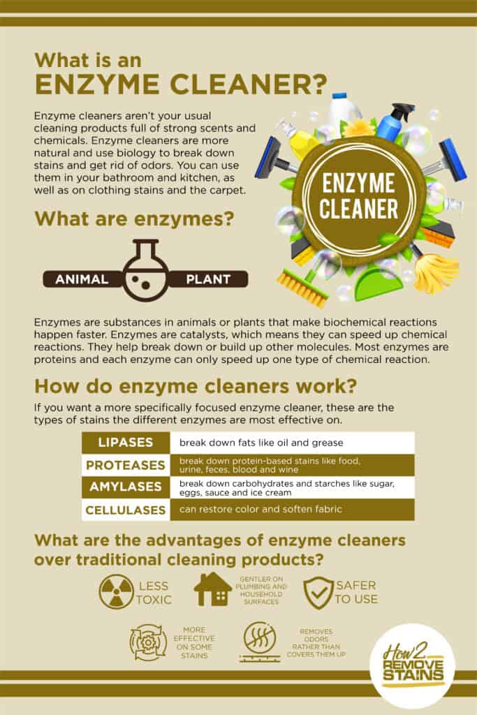 What is an Enzyme Cleaner