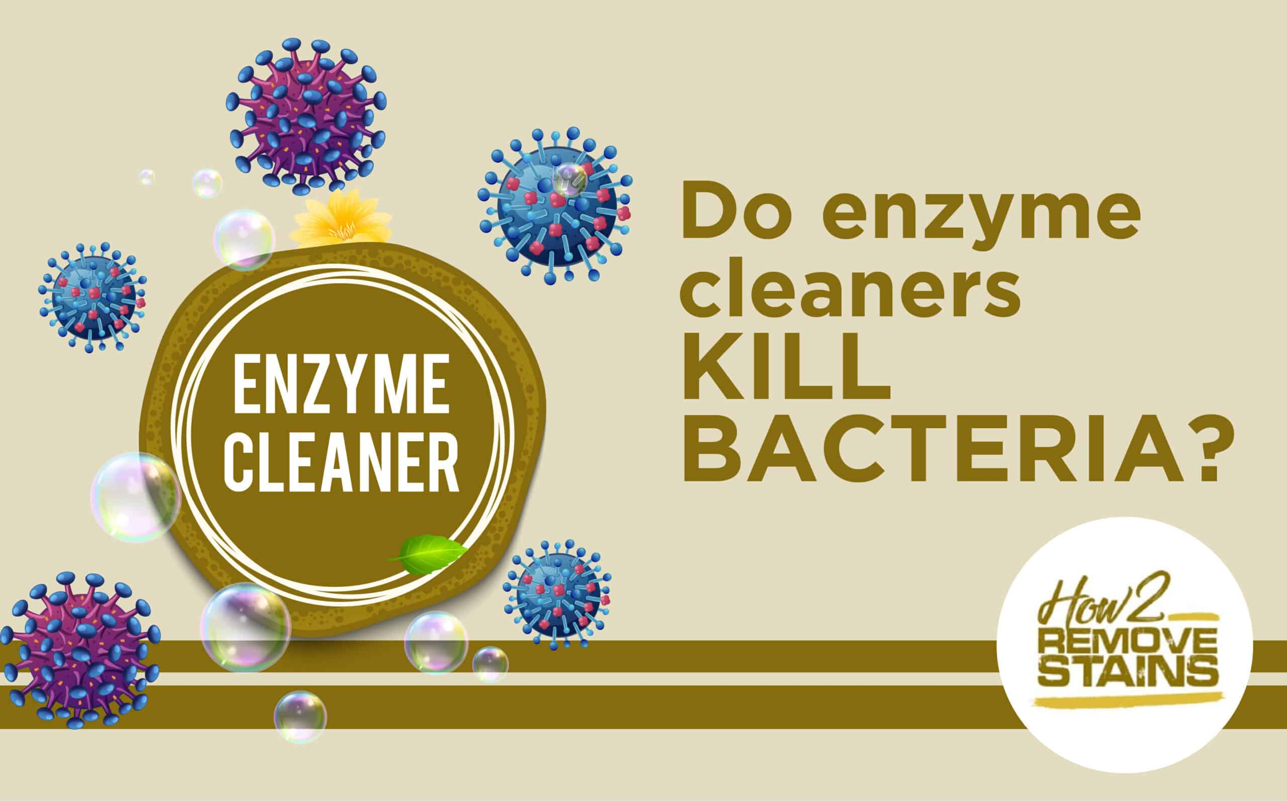 Do enzyme cleaners kill bacteria