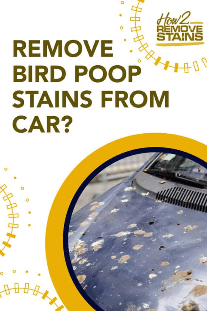 how to remove bird poop stains from car