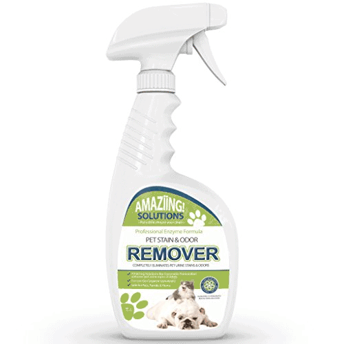 Amaziing Solutions Pet Odor Eliminator and Stain Remover Carpet Cleaner for Dog Urine